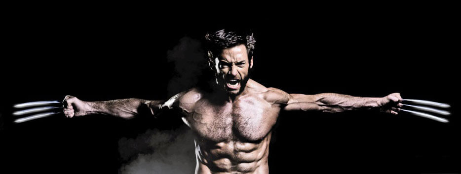 Wolverine  Wikipedia